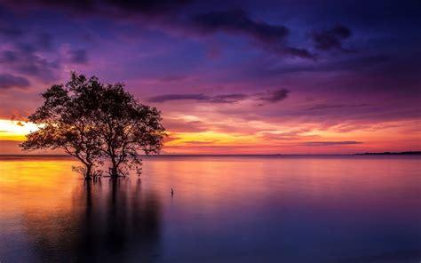 Sunset Lake Wood Red Sky Cloud Wallpaper Hd 80517 ...