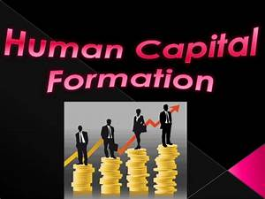 Human Capital Formation