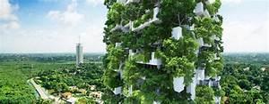 Mur Vegetal Exterieur : fabriquer un mur v g tal ext rieur avec plantes ~ Melissatoandfro.com Idées de Décoration