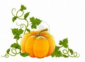 Pumpkin With Lots Of Leaves