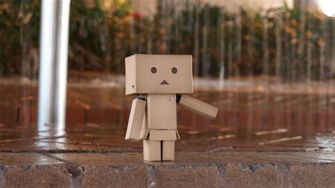 danboard  wallpapercom