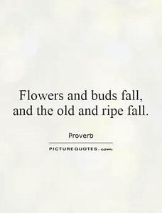 Flower Fall Quo... Autumn And Death Quotes
