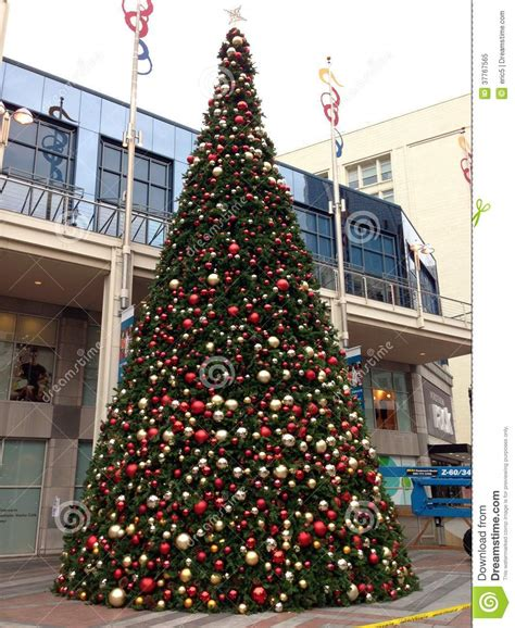 christmas tree seattle downtown shopping mall editorial