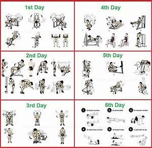 Stanozolol Cycle Guide Bodybuilding Program