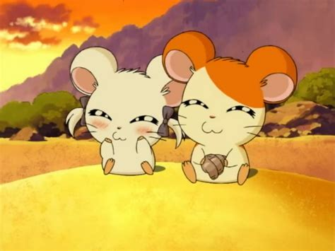 voir regarder howl s moving castle streaming vf film complet hamtaro episode 110