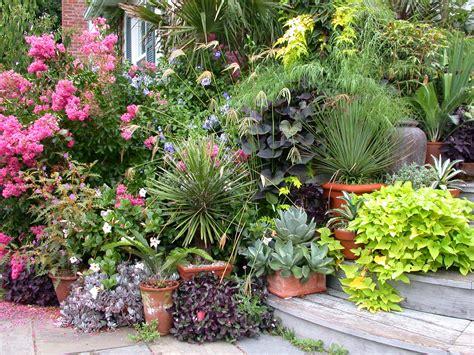 Garden Shots Landcraft Environments Wholesale Tropical