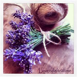 Lavendel Wann Schneiden : lavendel schneiden garten fr ulein der garten blog ~ Lizthompson.info Haus und Dekorationen