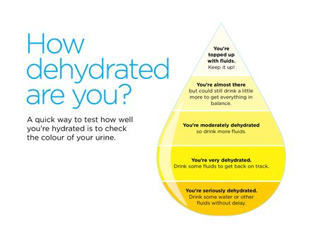 Keeping Hydrated Health Information Bupa Uk
