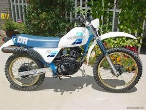 Suzuki 125 Dr : 1983 suzuki dr 125 picture 2432356 ~ Melissatoandfro.com Idées de Décoration