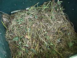 Compost Simple English Wikipedia   Encyclopedia