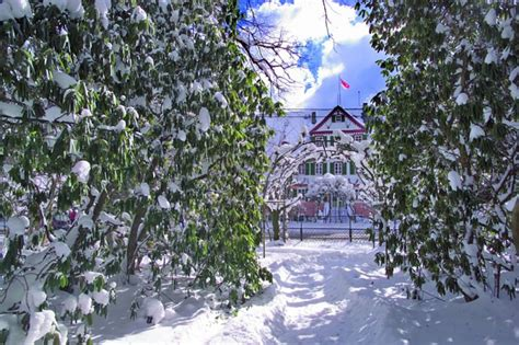 Englischer Garten Michelstadt by Englischer Garten Zu Eulbach 187 Odenwaldkreis 2019