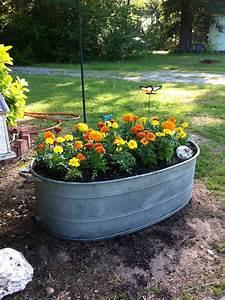 Pin, By, Tonya, On, Gardening, Love