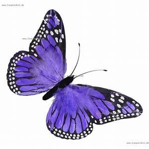 Deko Schmetterlinge Groß : deko shop schmetterling aus federn lila 76 x 40 cm schmetterlinge ~ Yasmunasinghe.com Haus und Dekorationen