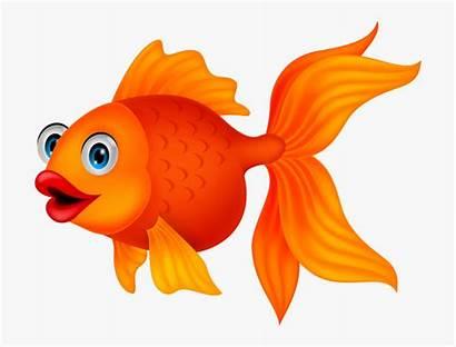 Goldfish Fish Cartoon Clipart Clip Golden Transparent