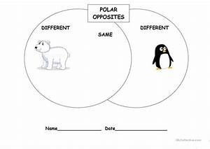 Polar Opposites Venn Diagram Worksheet