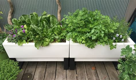 self watering garden planter pots make vegetable gardening