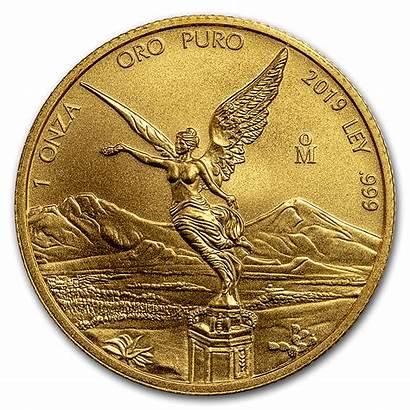 Gold Libertad Mexico Mexican Coins Coin Oz