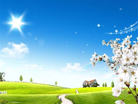 summer wallpapers backgrounds images freecreatives