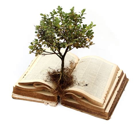 book on plants pray for bad dreams keep growing northwest church bible blog