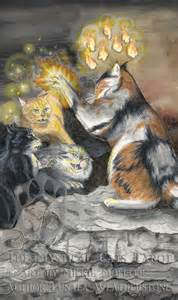mystical cats tarot mystical cats tarot clan