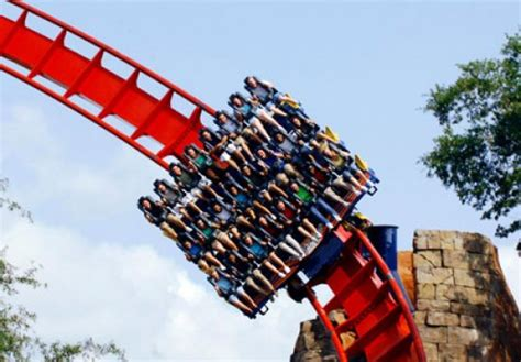 what time does busch gardens open busch gardens africa timings florida location entry