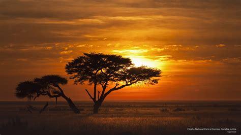 africa wallpaper etosha national park sunrise namibia africa