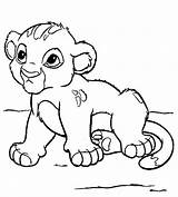 Lion Coloring Printable sketch template