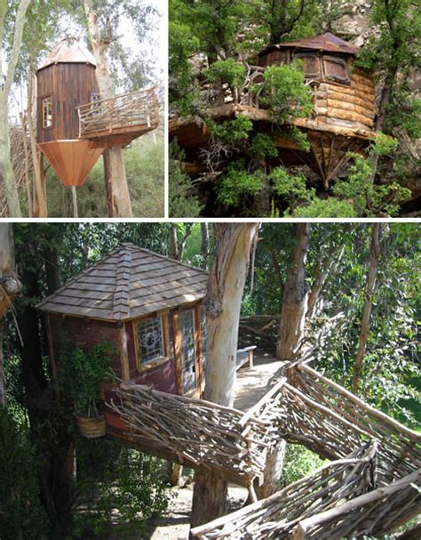 Sujith Spot Most Amazing Tree Houses Around The World