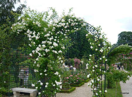bureau de poste l hay les roses la roseraie du val de marne à l 39 hay les roses ou la