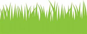Green Grass Clipart Free Stock Photo - Public Domain Pictures