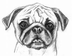 Cute Things To Draw - Pencil Art Drawing