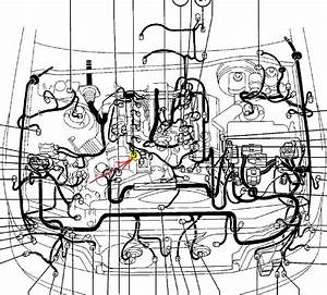 1995 Lexus Ls400 Radio Wiring Diagram  1995  Free Engine Image For User Manual Download