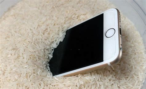 iphone in rice iphone dropped in water how to save