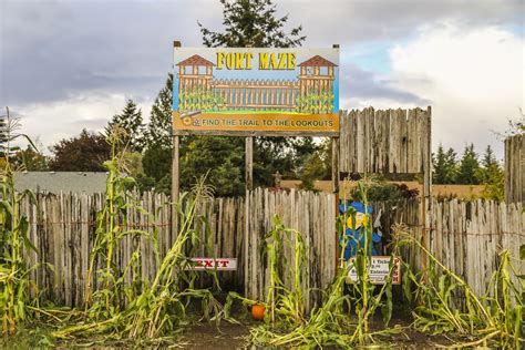 Joes Pumpkin Patch Vancouver Wa family travel pnw sights and fun