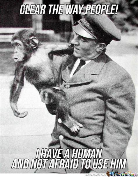Chimp Meme - chimpanzee memes best collection of funny chimpanzee pictures