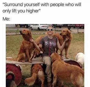 31 Funny Dog Memes Barnorama