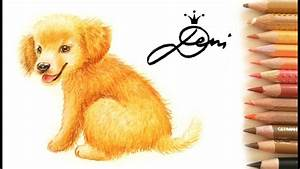 golden retriever hund zeichnen lernen welpe how to draw