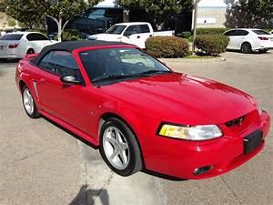 1999 Ford Mustang SVT Cobra for Sale | ClassicCars.com | CC-955139
