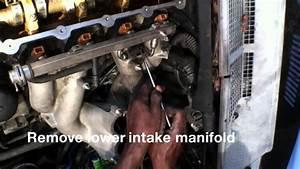 1996 318i E36 4 Cylinder M44 Engine Head Gasket