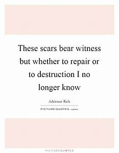 Repair Quotes |... Bearing Witness Quotes