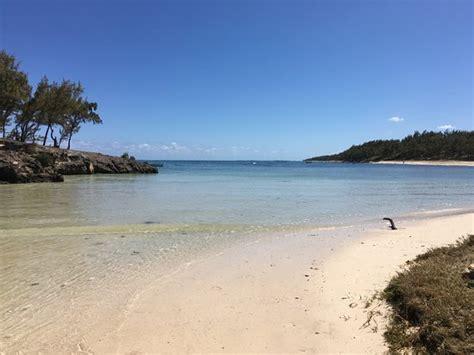chambres d hotes ile rodrigues partie de la plage jouxtant la paillote créole photo de