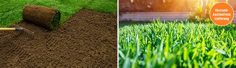 Rollrasen  Zum Perfekten Rasen In 5 Schritten Mit Obi