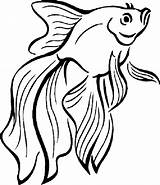Fish Coloring Peixe Betta Colorir Peces Dibujos Colorear Imprimir Desenhos Colouring Pintar Pez Educative Fische Desenho Tropical Poisson Animales Coloriage sketch template
