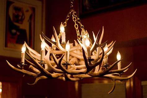 best 25 deer antler chandelier ideas on