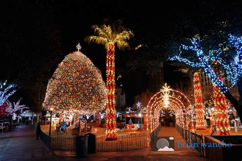 photo of the week christmas lights in san jacinto plaza