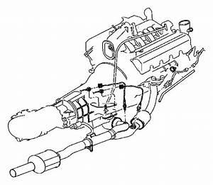 Dodge Dakota Oxygen Sensor  Front  Rear   Sensor  Oxygen