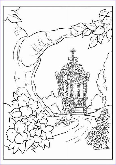 Nature Coloring Drawing Printable Sheet Adults Books