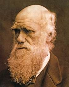 Image result for images darwin