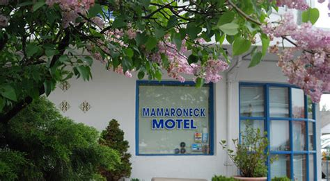 mamaroneck motel updated  prices reviews ny