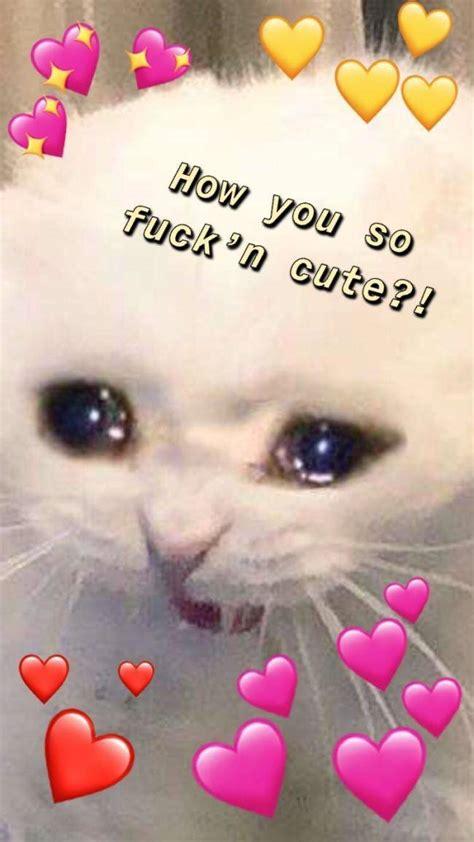 funny flirt memes barnorama